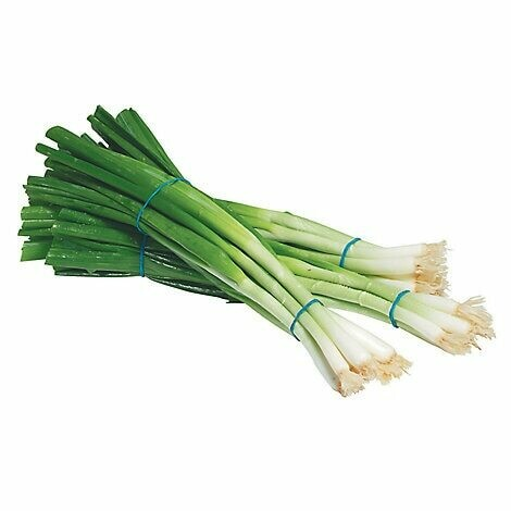 Green Onion, scallions (bunch)