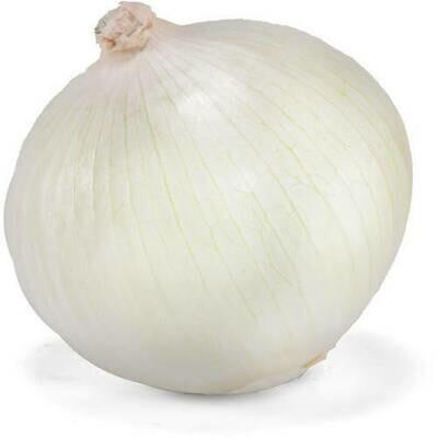 White Onion (each)