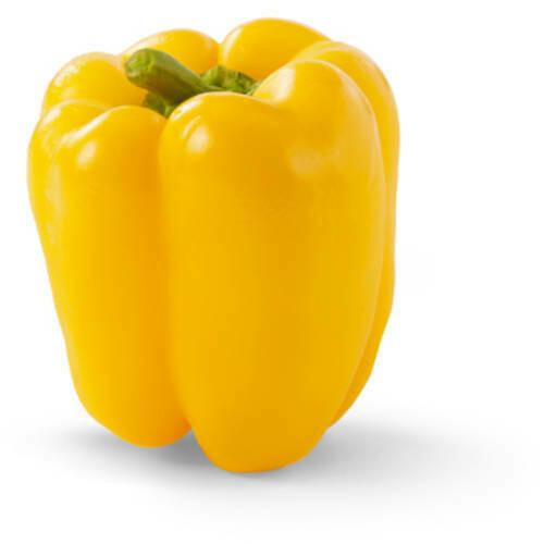 Yellow Bell Pepper (each)