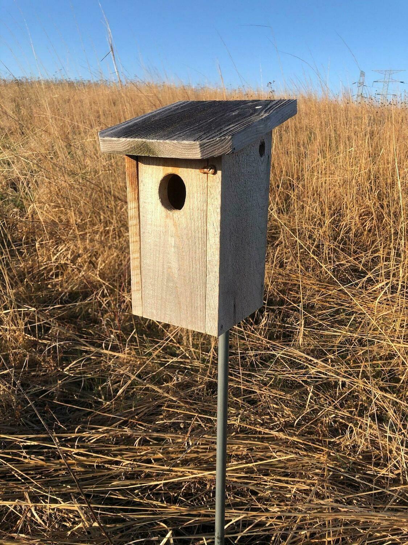 Square Bluebird House Members' Price