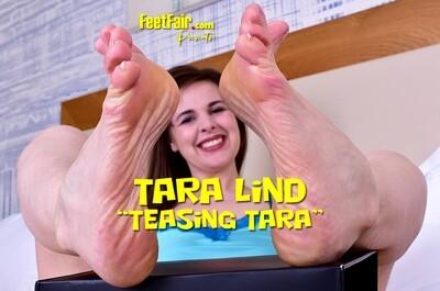 Teasing Tara (V4K)