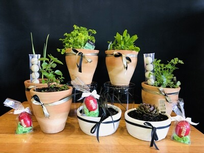 Fathers Day Green field pots