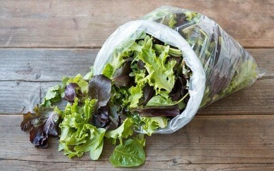 Leafy Solutions Living Lettuce OR Spring Mix