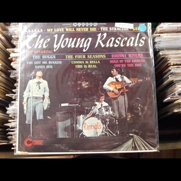 YOUNG RASCALS- Also STARRING