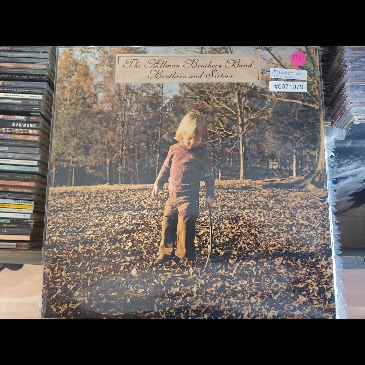 Allman BROTHERs Band Brothers and sisters