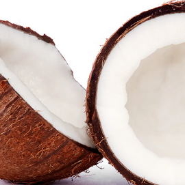 Coconut Custard Pie (pre order only)