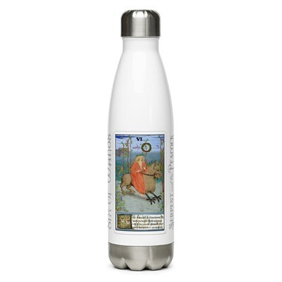 Stainless Steel Water Bottle - Tarot; Six of Wands
