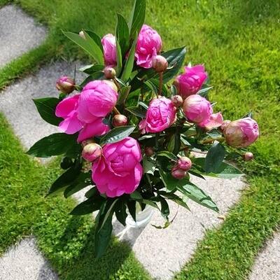 Blumen-Strauss mit saisonalen Blumen