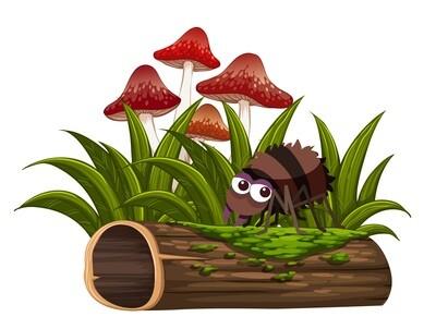 Pflanzenschutzmittel gegen diverse Ursachen