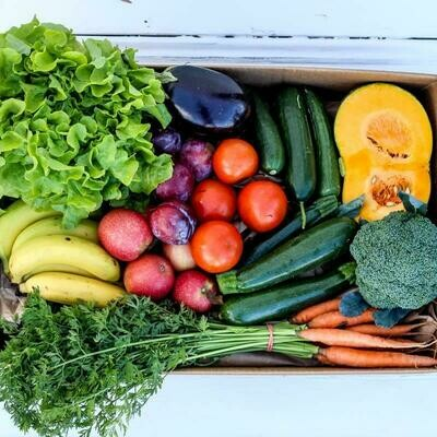 LARGE Farm Fresh Fruit and Veg Box