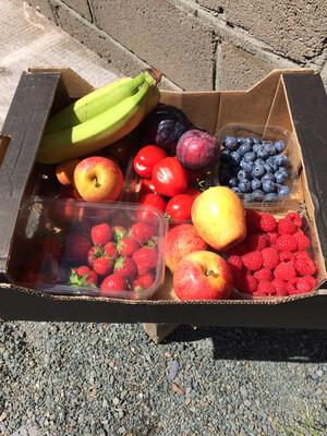 """Just fruit"" Box"