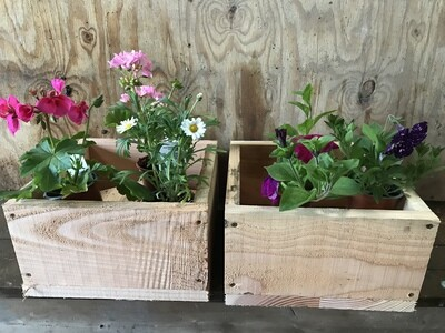 Wooden Planters - Patio Boxes Flowers
