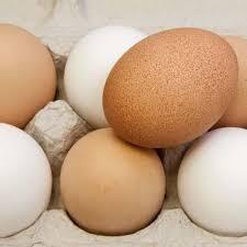 """""""EXTRA LARGE"""" Free Range Eggs"""