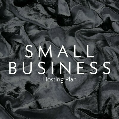 Hosting - Small Business Plan