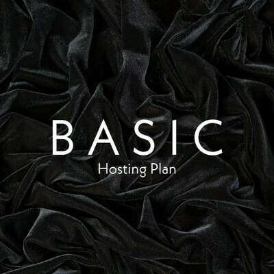 Hosting - Basic Plan