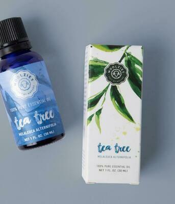 Tea Tree Essential Oil 1oz - Woolzies
