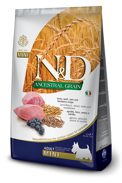 N&D ANCESTRAL GRAIN - LAMB & BLUEBERRY ADULT MINI 5.5LB
