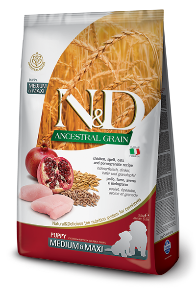N&D ANCESTRAL GRAIN - CHICKEN & POMEGRANATE PUPPY MINI 5.5LB