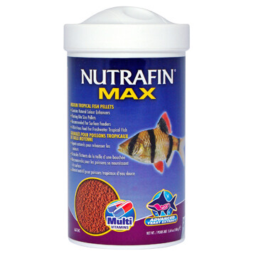NUTRAFIN MAX MEDIUM TROPICAL FISH PELLETS 160g