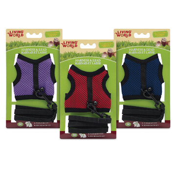 LIVING WORLD MEDIUM HARNESS & LEAD SET - ASSORTED COLOURS