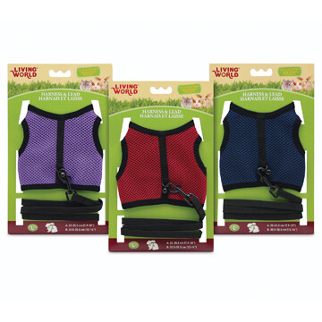 LIVING WORLD LARGE HARNESS AND LEAD SET - ASSORTED COLOURS