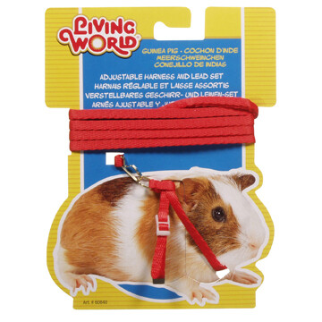 LIVING WORLD FIGURE 8 HARNESS AND LEAD SET FOR GUINEA PIGS