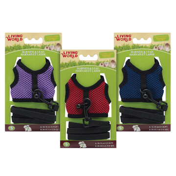 LIVING WORLD SMALL HARNESS & LEAD SET - ASSORTED COLOURS