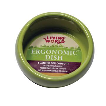 LIVING WORLD ERGONOMIC DISH LARGE GREEN