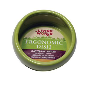 LIVING WORLD ERGONOMIC DISH SMALL GREEN