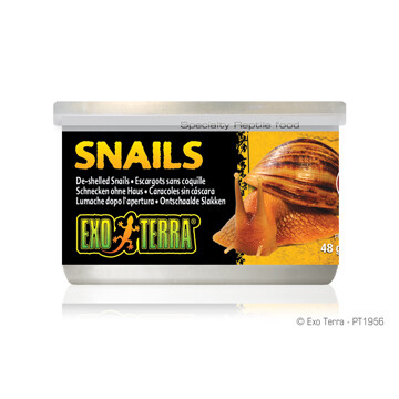 EXO TERRA CANNED SNAILS 48g
