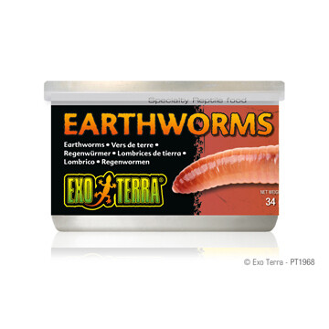 EXO TERRA CANNED EARTHWORMS 34g