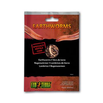 EXO TERRA VACUUM PACKED EARTHWORMS 15g
