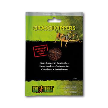 EXO TERRA VACUUM PACKED GRASSHOPPERS 15g