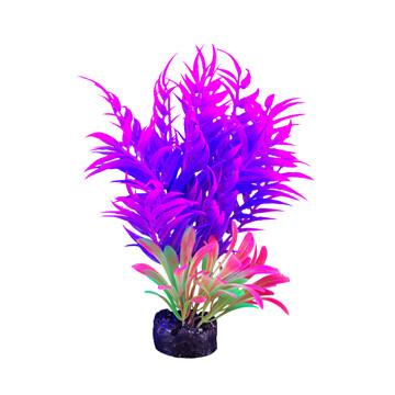 "Marina I-Glo Plant 5.5"" Pink/Purple Fern"