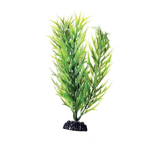 "Underwater Treasures 8"" - Green Bamboo"