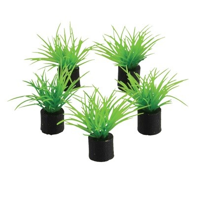 Underwater Treasures 5pk Mini Plant Green Grass