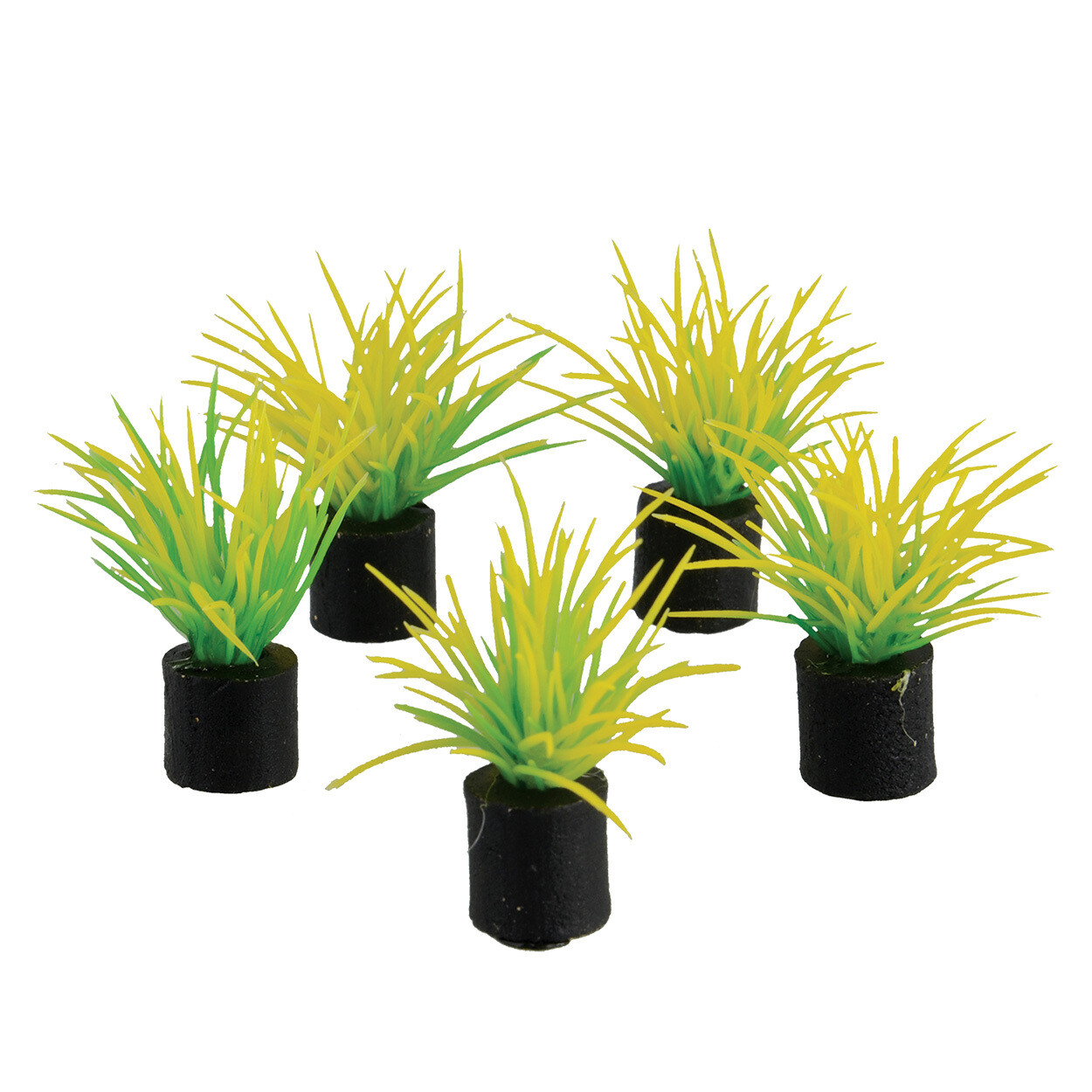 Underwater Treasures 5pk Mini Plant Spring Grass