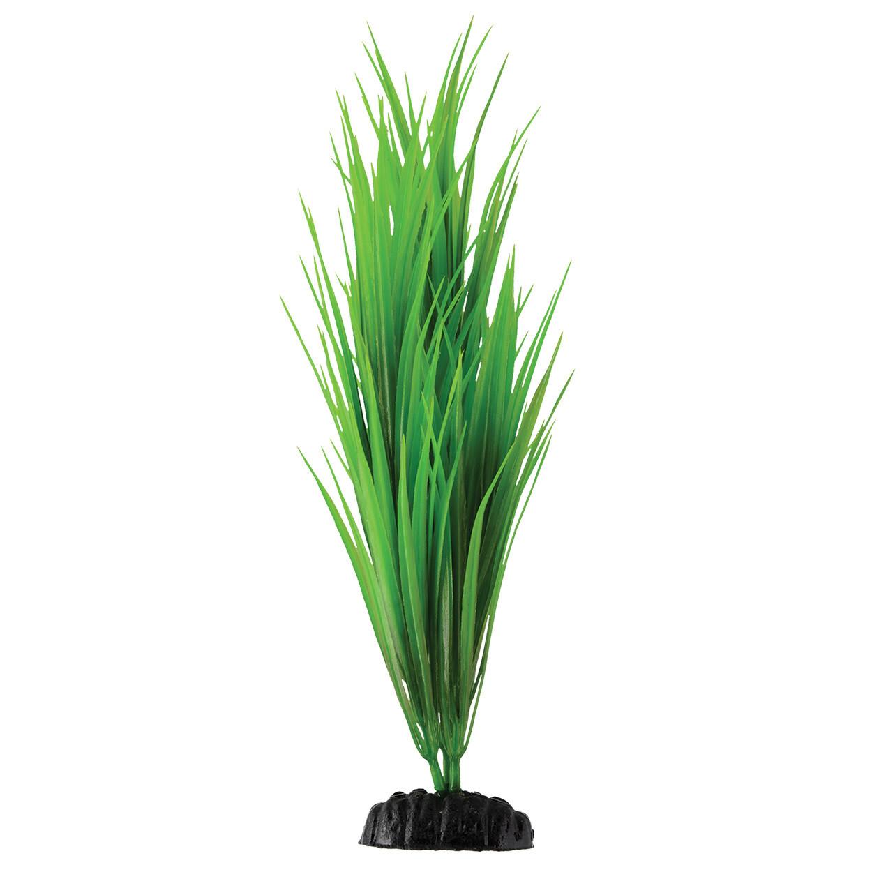 "Underwater Treasures 12"" - Green Nile Grass"