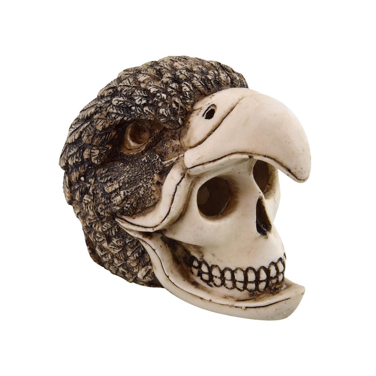 Underwater Treasures Birdman Skull