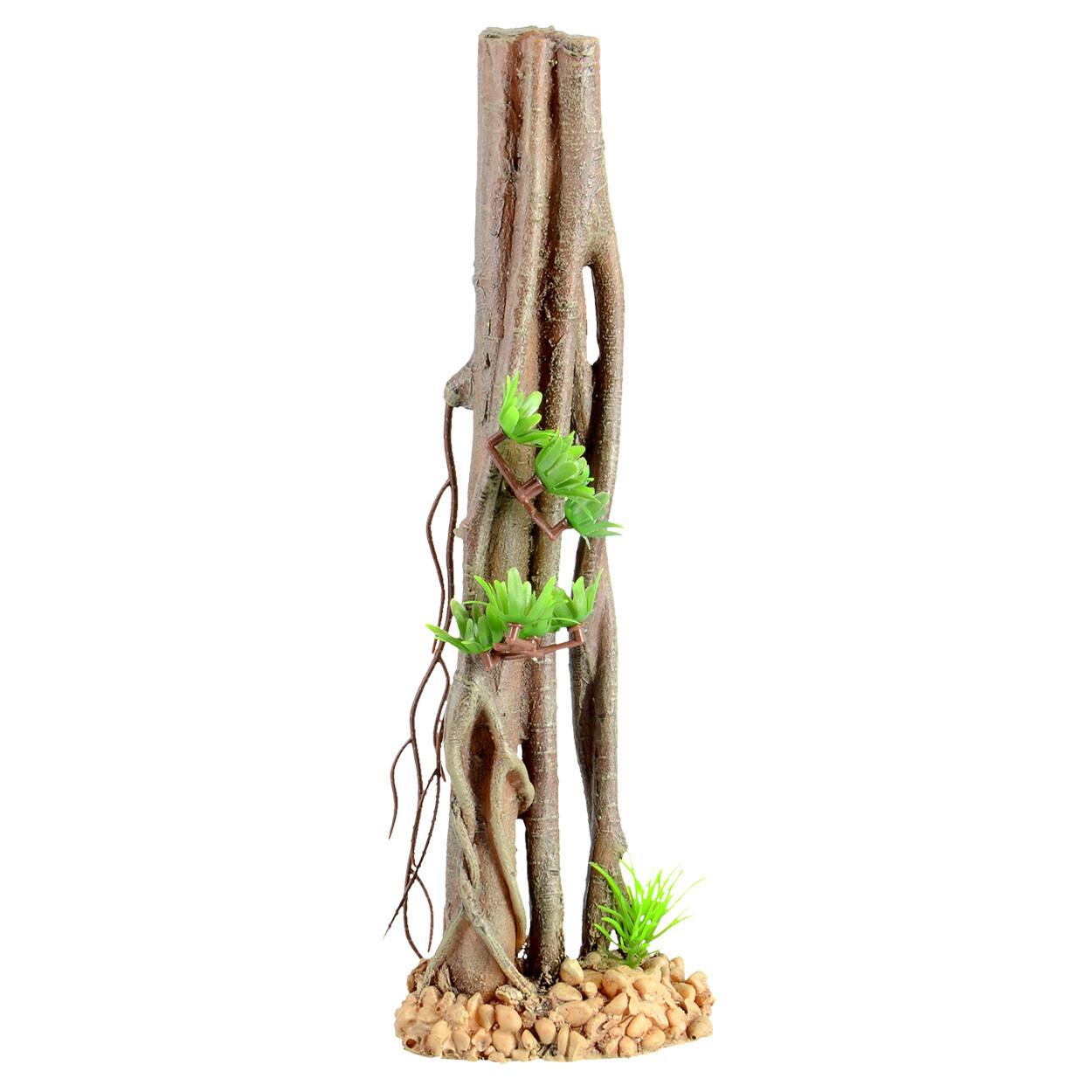 Underwater Treasures Mangrove Root A
