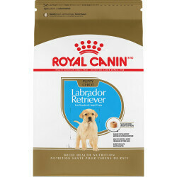 ROYAL CANIN LABRADOR RETRIEVER PUPPY 30LB