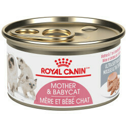 ROYAL CANIN CAT - MOTHER & BABYCAT ULTRA SOFT MOUSSE CAN 85g