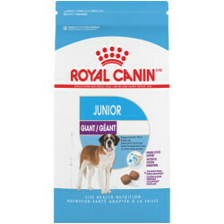 ROYAL CANIN GIANT JUNIOR 30LB