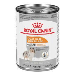ROYAL CANIN COAT CARE 13.5OZ