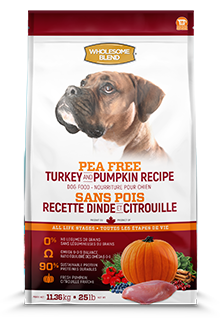 Wholesome Blend Pea Free ALS Turkey & Pumpkin 2.27kg