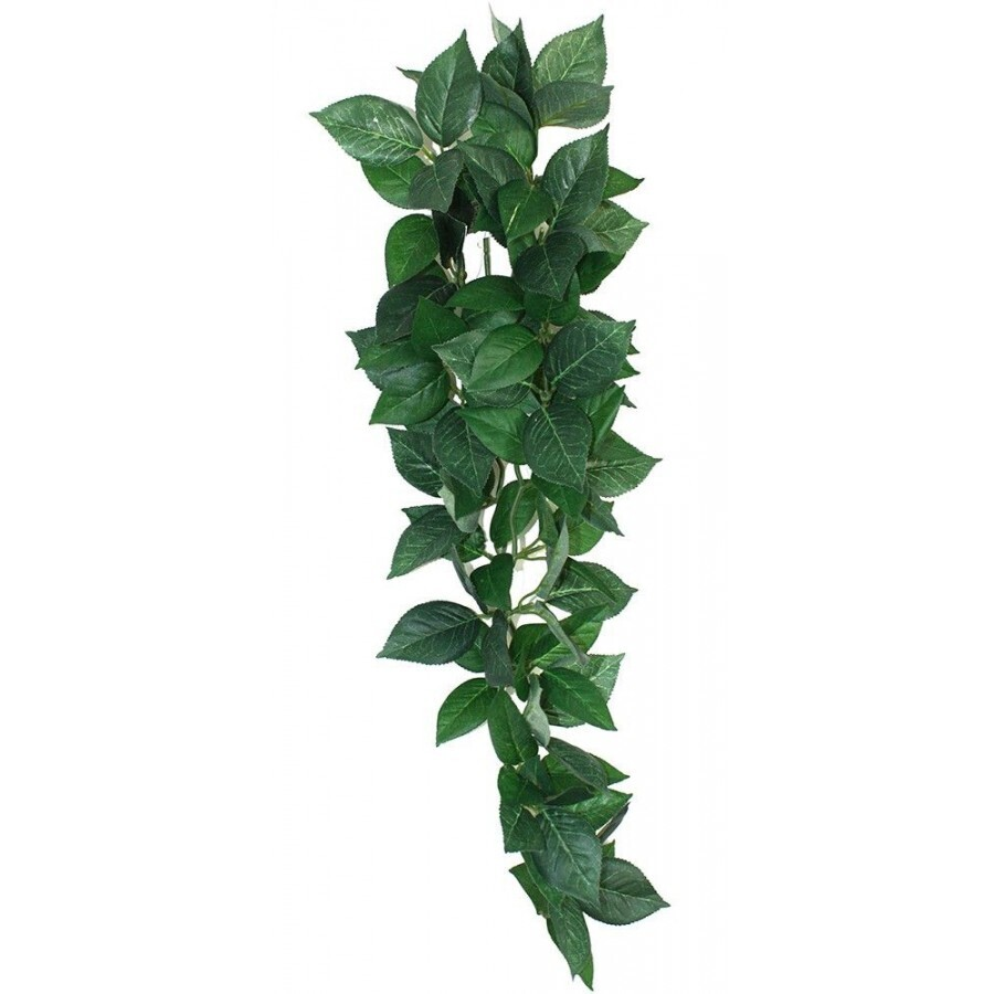 Komodo 45cm Hanging Vine