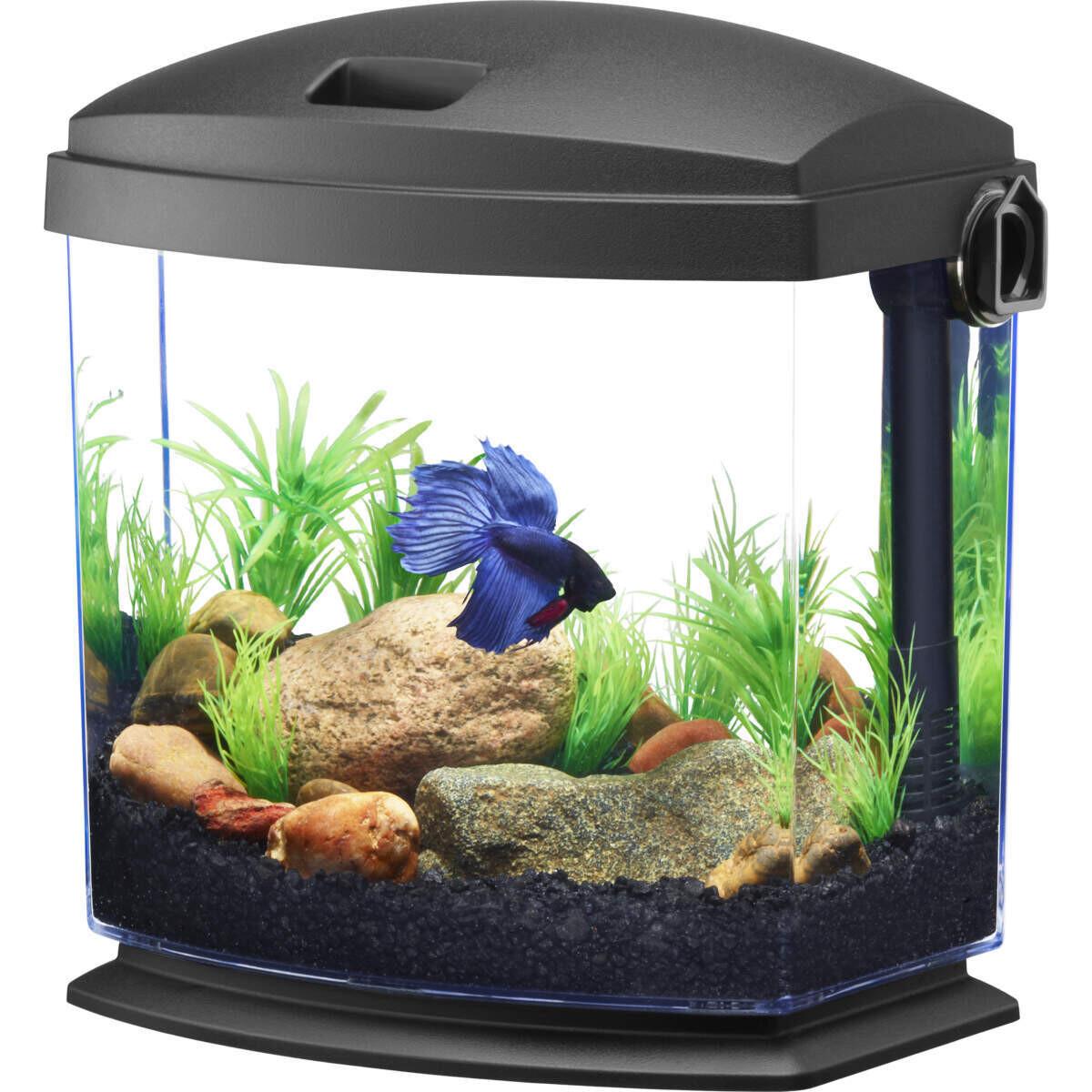 Aqueon LED BettaBow 1 Gal  Aquarium Kit