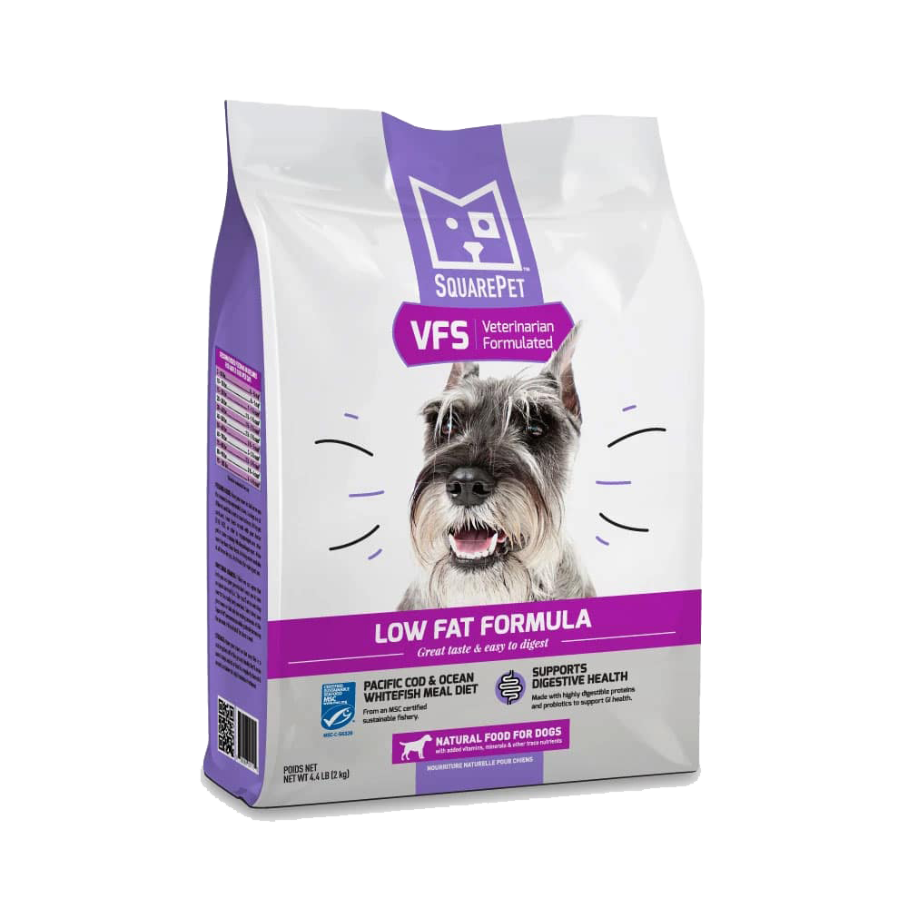 SquarePet VFS Canine Gastrointestinal Support Low Fat 4.4lb
