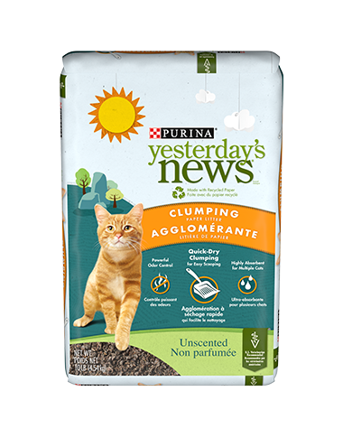 Purina Yesterday's News Clumping 9.07kg