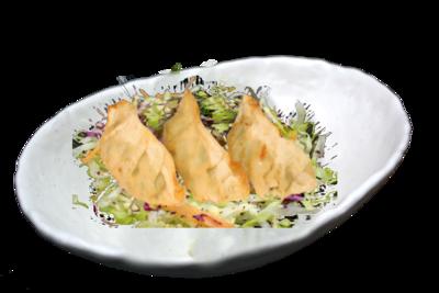 Gyoza (vegetable dumpling)